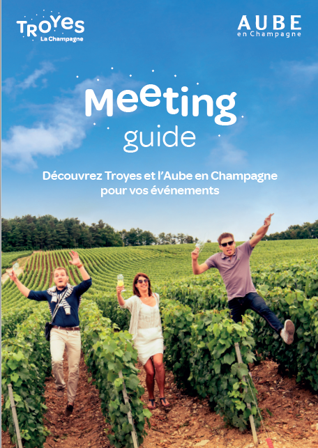 Meeting Guide